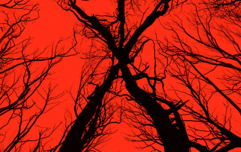 Greenberg at Green Hills: The Blair Witch Project (1999) and Blair Witch (2016)