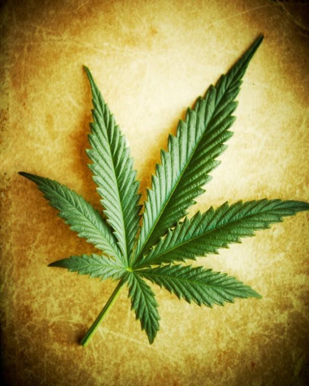 Marijuana decriminalization bill advances in Nashville Metro Council