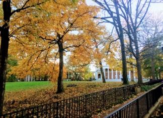 fall at Vanderbilt