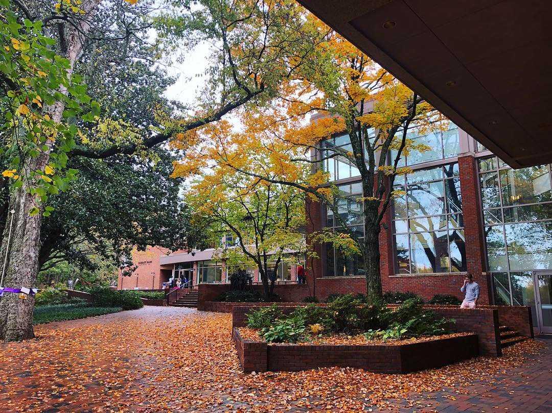 OACS partners with Lyft to provide Vanderbilt students free transportation to service organizations