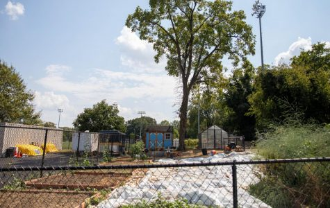 VU Community Garden sprouts into its second year