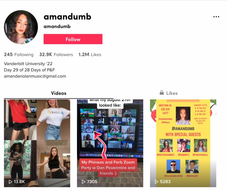 Junior Amanda Nolan's TikTok page, where she has amassed 1.2 million likes. Screenshot by Eva Pace
