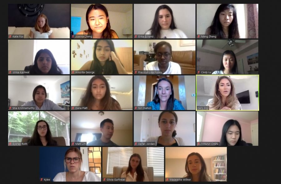 An Aspire to Her Q&A Zoom with Carly Bigi, Vanderbilt alumna and founder/CEO of Laws of Motion. Screenshot by Jo Cheng.