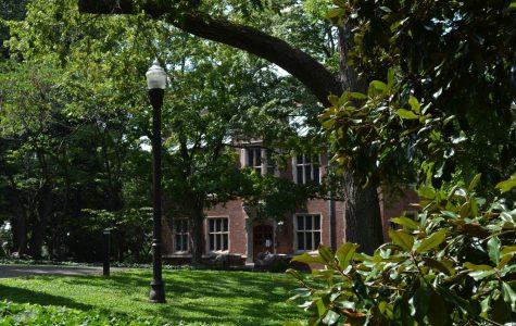 Paths along Vanderbilt's main campus (Hustler Multimedia/Alex Venero)