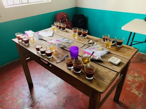 local coffee in Guatemala