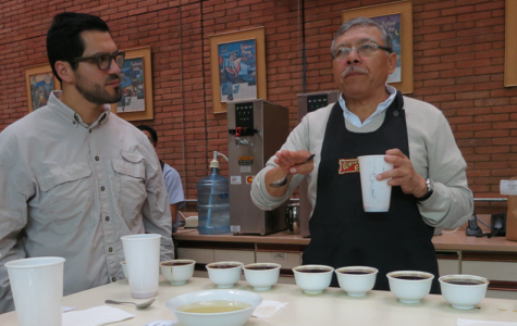 coffee tasting with a coffee sommelier