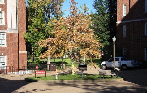 Next Steps is a program in Peabody College located on Commons at Vanderbilt University. (Hustler Multimedia/Josh Rehders)