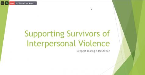 Screenshot of Project Safe program