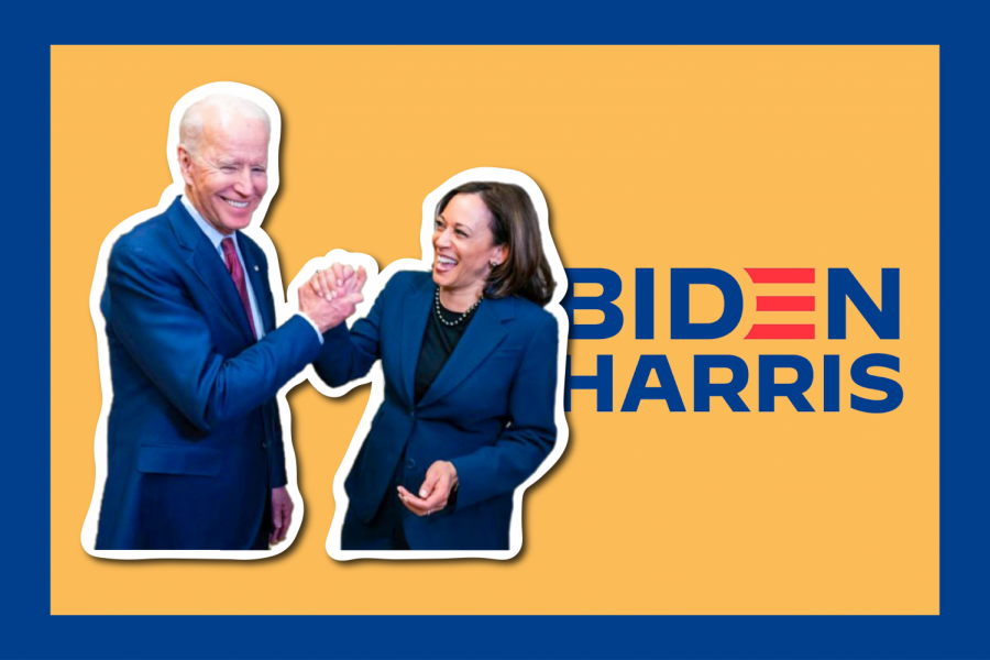 Joe Biden's victory is a testament to the resilience of our democracy; let's celebrate it. (Hustler Communications/Emery Little)
