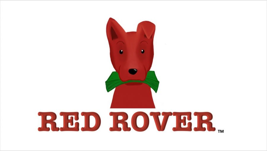 Red Rover, a student-led polling service that facilitates company acquisition of youth user data (Alex Blumenfeld)