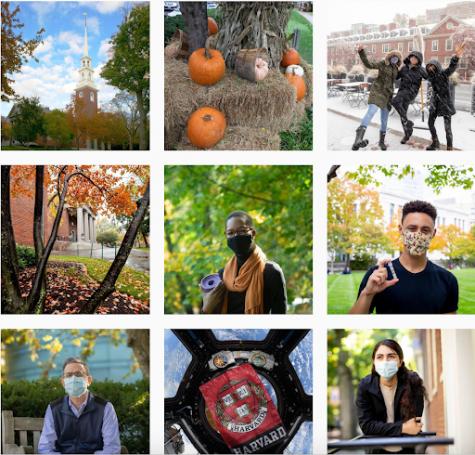 Harvard Instagram's recent posts