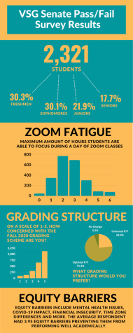 VSG pass/fail survey report infographic