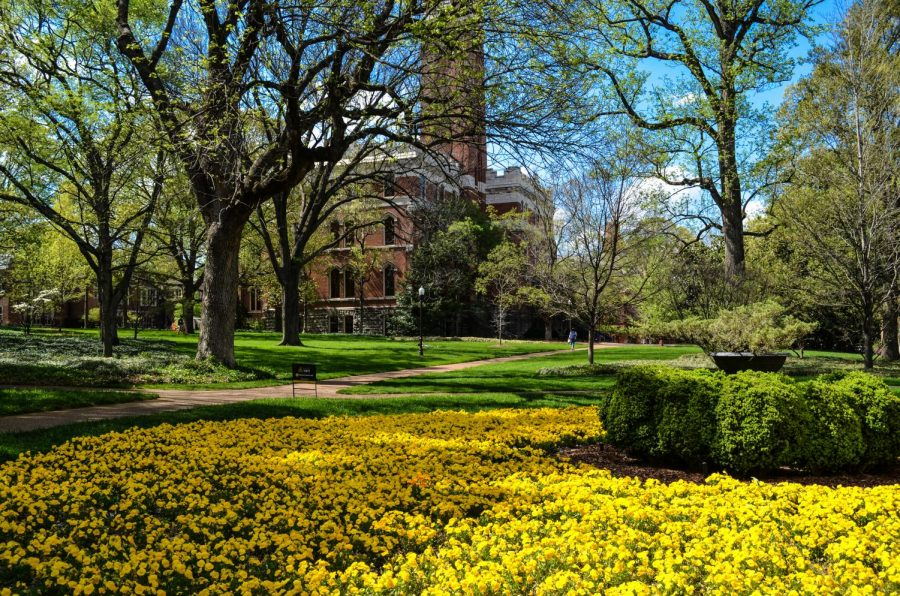 Spring continues to come in full bloom as the weather seems to finally turn warmer on Friday, April 9th, 2021