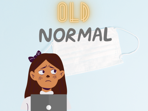 Through the Laptop Screen: The Old-Normal is Not-So-Normal