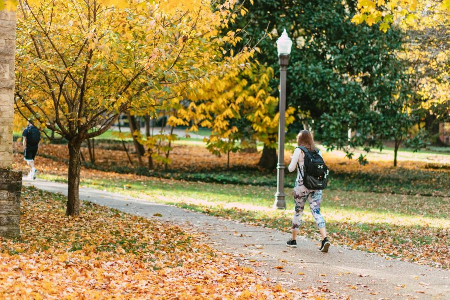 picture of campus as a student walks by and trees fall