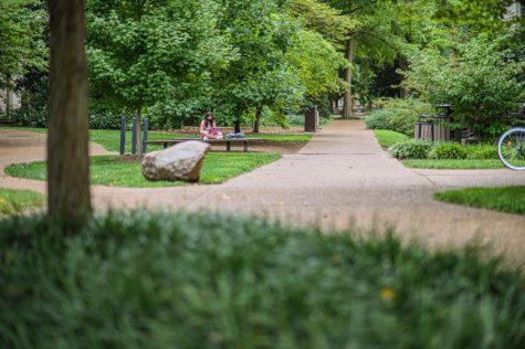 grass and sidewalks on campus