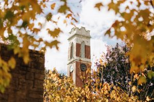 Kirland Tower with fall leaves surrounding it