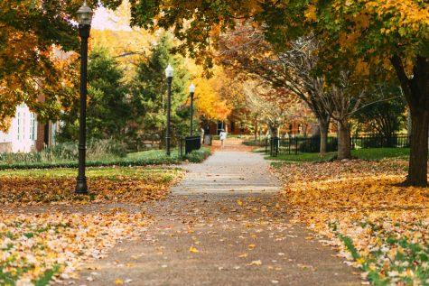 A path on Vanderbilts campus